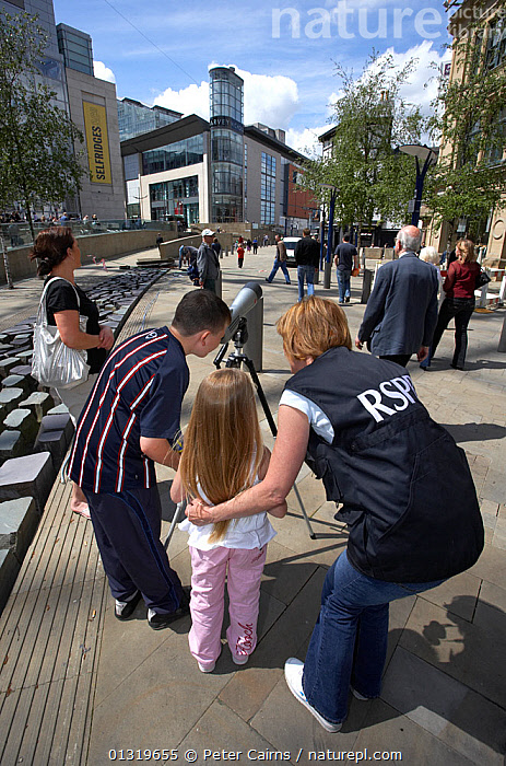 Young family looking through telescope at peregrine falcons as part of RSPB Peregrine Watch. Manchester, England, May.  ,  BIRDWATCHING,CHILDREN,CITIES,CONSERVATION,EDUCATION,OUTDOORS,PEOPLE,TELESCOPES,TOURISM,TOWNS,URBAN,VERTICAL,YOUNG,Europe  ,  Peter Cairns