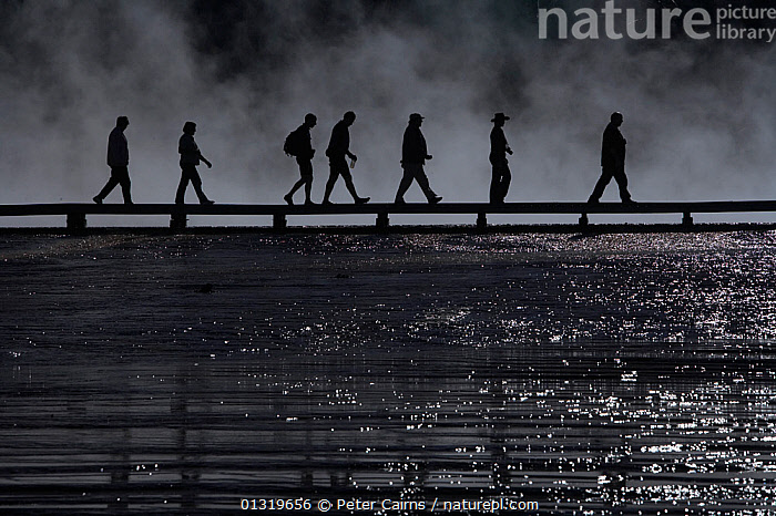 Tourists silhouetted on boardwalk at Midway Geyser Basin. Yellowstone National Park, Wyoming, USA, September.  ,  ADVENTURE,black and white,conformity,GEOTHERMAL,hydrothermal,LEADERSHIP,MIST,monochrome,NP,outdoors,PEOPLE,reserves,SEVEN,SILHOUETTES,TOURISM,USA,WALKING,WATER,GEOLOGY ,WEATHER ,National Park,North America  ,  Peter Cairns