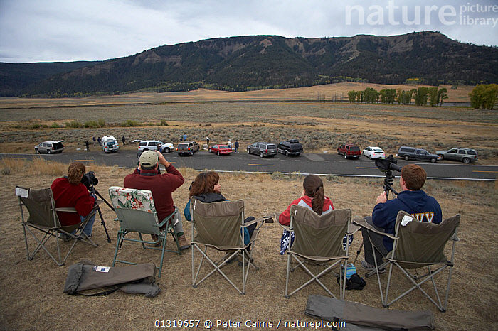 Wolf watchers looking out over Lamar Valley. Yellowstone National Park, Wyoming, USA, September.  ,  LANDSCAPES,LEISURE,MOUNTAINS,NORTH AMERICA,NP,OUTDOORS,PEOPLE,RESERVE,TOURISM,USA,WOLVES,National Park  ,  Peter Cairns