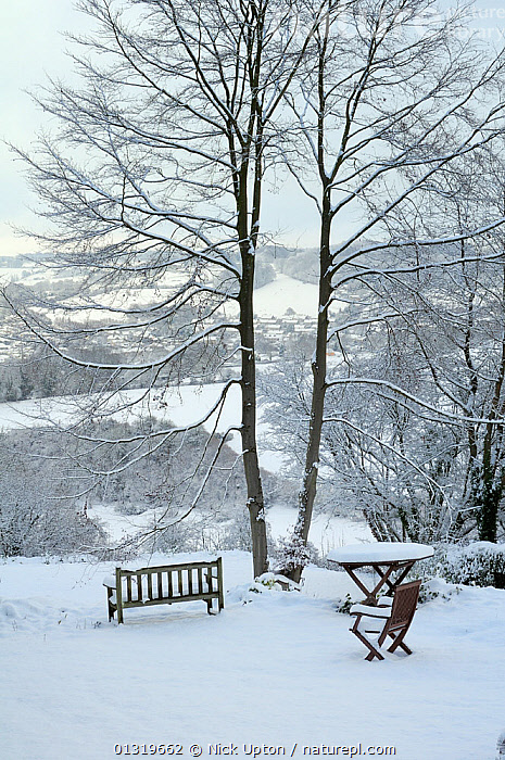 Garden furniture and outlook view towards Box village in winter snow, Wiltshire, UK, December 2010  ,  CHAIRS,ENGLAND,EUROPE,GARDENS,ICE,LANDSCAPES,SNOW,TABLES,TREES,UK,VERTICAL,WINTER,Plants,United Kingdom  ,  Nick Upton