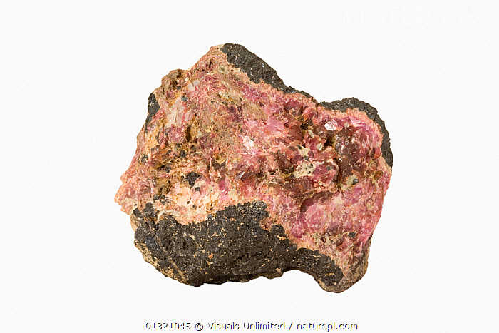 Hodgkinsonite. New Jersey, USA.  ,  CLOSE UP,DIRECTLY,HODGKINSONITE,JERSEY,MINERAL,MINERALS,NEW,OBJECT,ROCK,ROCKS,SHOT,SINGLE,STUDIO,USA,WHITE,North America  ,  Visuals Unlimited
