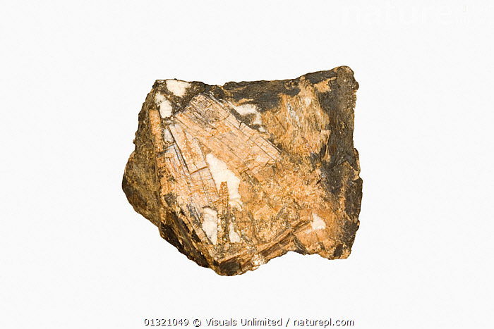 Bementite.  ,  BEMENTITE,BROWN,CLOSE UP,CRYSTAL,DIRECTLY,GEOLOGY,MINERAL,MINERALS,OBJECT,ROCKS,SHOT,SINGLE,STUDIO,WHITE  ,  Visuals Unlimited