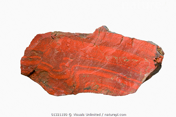 Jasper with visible folding Colechester, Vermont, USA.  ,  ANGLE,BANDED,BEAUTY,FOLDING,GEMSTONE,GEOLOGY,HIGH,JASPER,MINERAL,MINERALS,NATURAL,OBJECT,OPAQUE,ORANGE,PATTERN,ROCKS,SHOT,SINGLE,STRIPED,STUDIO,USA,WHITE,North America  ,  Visuals Unlimited