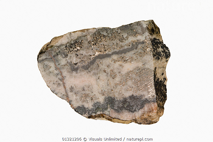 Silver, South America  ,  BEAUTY,ELEMENT,GEOLOGY,GREY,MINERAL,MINERALS,NATURAL,OBJECT,PATTERN,ROCKS,SHOT,SILVER,SINGLE,STUDIO,WHITE  ,  Visuals Unlimited