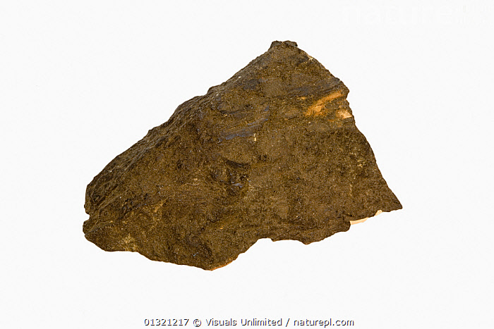 Euxenite, Norway  ,  BROWN,EUXENITE,GEOLOGY,MINERAL,MINERALS,NORWAY,OBJECT,ROCKS,ROUGH,SHOT,SINGLE,STUDIO,TEXTURED,WHITE,Europe,Scandinavia  ,  Visuals Unlimited