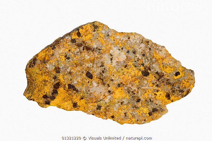 Bindheimite, Nevada  ,  BINDHEIMITE,COLORED,GEOLOGY,MINERAL,MINERALS,MULTI,NEVADA,OBJECT,ROCKS,SHOT,SINGLE,STUDIO,WHITE  ,  Visuals Unlimited