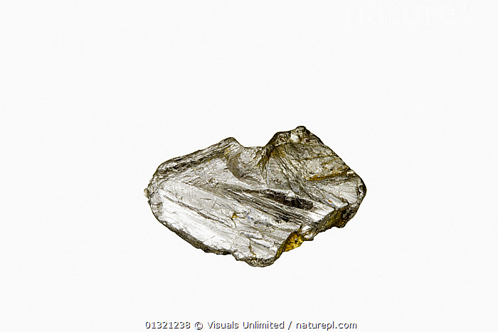 Molybdenite, Maine, USA  ,  DIRECTLY,GEOLOGY,MAINE,MINERAL,MINERALS,MOLYBDENITE,NATURAL,OBJECT,PATTERN,ROCKS,SHINY,SHOT,SILVER,SINGLE,STUDIO,USA,WHITE,North America  ,  Visuals Unlimited