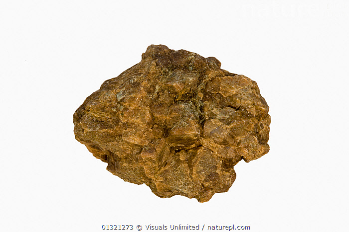 Andradite  ,  ANDRADITE,BRONZE,GEOLOGY,MINERAL,MINERALS,OBJECT,ROCKS,ROUGH,SHOT,SINGLE,STUDIO,SURFACE,WHITE  ,  Visuals Unlimited