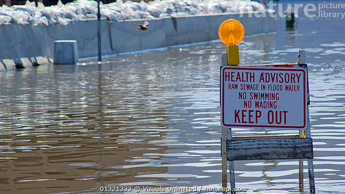 A sign warns of raw sewage in floodwater during the historic 2008 flood on the Mississippi River in Burlington, Iowa, USA, June 2008  ,  ADVERSITY,ADVISORY,CONTAMINATION,DAMAGE,DESTRUCTION,DIRTY,DISASTERS,EMERGENCIES,FLOODS,GRIFT,HEALTH,JON,LANDSCAPES,MISFORTUNE,OUTDOORS,RIVER,SANDBAGS,SIGN,USA,VAN,WARNING,WATER,WEATHER,North America  ,  Visuals Unlimited