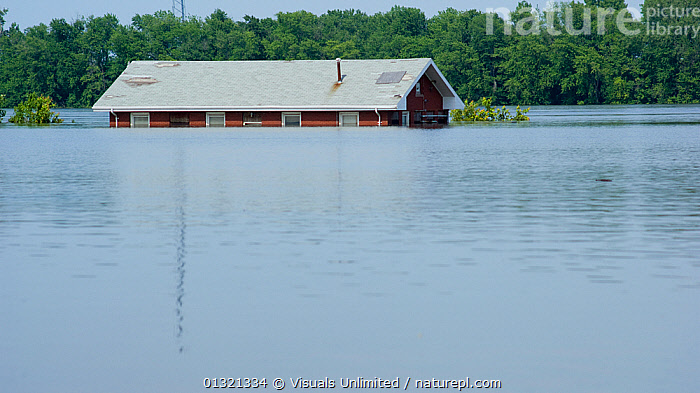 The Mississippi River partially submerges a building in Burlington, Iowa during the historic 2008 flood, USA, June 2008  ,  ADVERSITY,BUILDING,DAMAGE,DESTRUCTION,DISASTERS,EMERGENCIES,EXTERIOR,FLOOD,FLOODS,GRIFT,JON,LANDSCAPES,MISFORTUNE,MISSISSIPPI,OUTDOORS,RIVER,TREES,USA,VAN,WATER,WEATHER,PLANTS,North America  ,  Visuals Unlimited