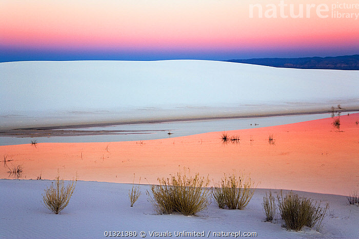 Dusk sky reflected in a pool of water from recent rains, White Sands National Park, New Mexico, USA. November 2006  ,  DESERTS,DUNE,DUSK,GEOLOGY,LANDSCAPES,MEXICO,MONUMENT,NATIONAL,NEW,OUTDOORS,POOL,REFLECTION,SAND,SANDS,SUNRISE,SUNSET,USA,WHITE,CENTRAL-AMERICA,North America  ,  Visuals Unlimited