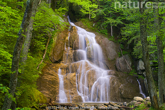 Moss Glenn Falls, Granville, Vermont, USA  ,  BEAUTY,BROWN,FALLS,FLOWING,GLENN,GREEN,LANDSCAPES,MOSS,OUTDOORS,STREAM,USA,WATER,WATERFALL,WHITE,North America  ,  Visuals Unlimited