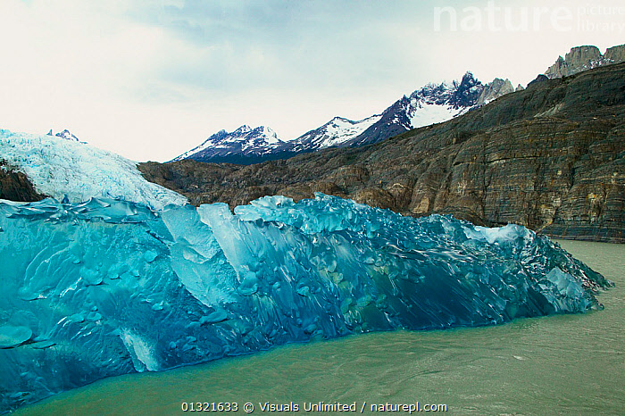 Gray's Glacier in Gray's Lagoon, Torres del Paine National Park, Chile, December 2003.  ,  BLUE,CHILE,COLD,DESTINATIONS,ECO,GLACIER,GRAYS,GREEN,ICE,LAGOON,NATIONAL,OUTDOORS,PAINE,PARK,SPACE,TORRES,TOURISM,TRAVEL,SOUTH-AMERICA  ,  Visuals Unlimited