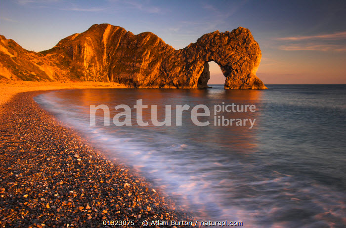 Durdle Door in evening light, Jurassic Coast World Heritage Site, Dorset, England, April 2004 *Not available for use on 2013 retail calendars in Germany, Austria and Switzerland.  ,  arch,arches,archways,BEACHES,EROSION,EUROPE,GEOLOGY,LANDSCAPES,PEACEFUL,ROCK FORMATIONS,sea,SUNSET,UK,UNESCO,WAVES,Concepts,United Kingdom,,Dorset and East Devon Coast, UNESCO World Heritage Site,  ,  Adam Burton