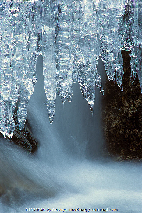 Icicles overhanging  a small stream, Telemark, Norway  ,  ARTY SHOTS,COLD,EUROPE,ICE,NORWAY,SCANDINAVIA,VERTICAL,WATER,WINTER  ,  Orsolya Haarberg