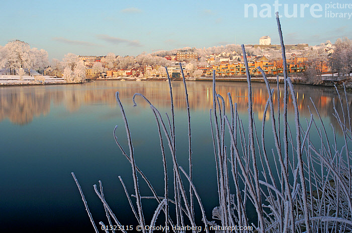 Winter landscape, the Nidelva River with the Kristiansen fortress in the background, Trondheim, Sor-Trondelag, Norway, January 2006  ,  BUILDINGS,EUROPE,FROST,LANDSCAPES,NORWAY,RIVERS,SCANDINAVIA,TOWNS,WINTER,Weather  ,  Orsolya Haarberg