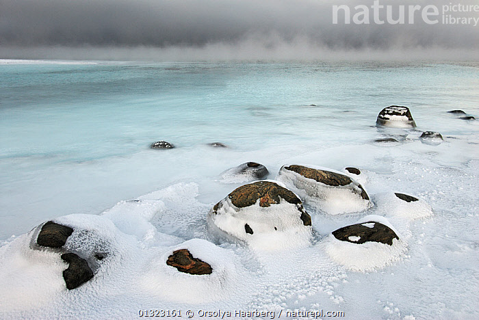 Sea ice covering rocks and arctic sea mist, Varangerfjord, Byluft, Nesseby, Finnmark, Norway  ,  ARCTIC,COASTS,EUROPE,ICE,LANDSCAPES,MIST,NORWAY,ROCKS,SCANDINAVIA,WINTER,WEATHER  ,  Orsolya Haarberg