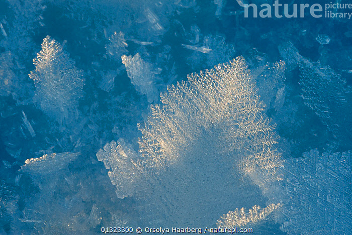 Frost, ice crystals on the ground, Norway  ,  ARTY SHOTS,BLUE,COLD,FROST,ICE,NORWAY,SCANDINAVIA,WINTER,Weather,Europe  ,  Orsolya Haarberg
