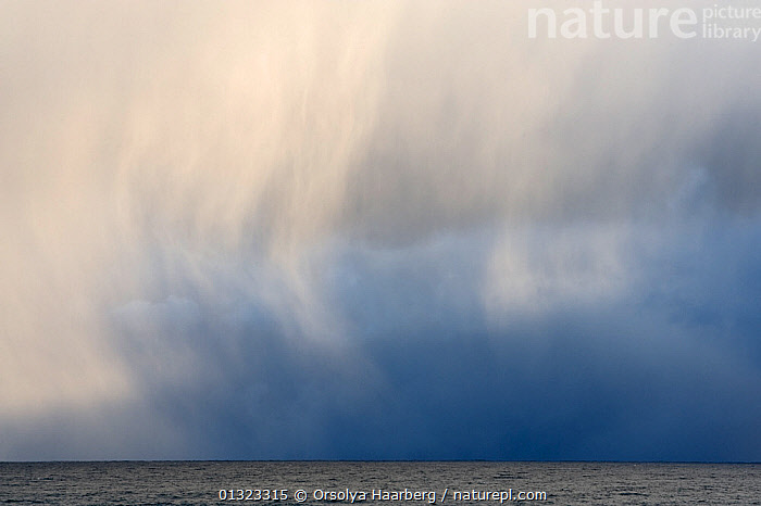 Snow clouds swirling over landscape, Varanger, Finnmark, Norway, March 2010  ,  ARCTIC,CLOUDS,COASTS,EUROPE,LANDSCAPES,NORWAY,SCANDINAVIA,SNOW,WEATHER,WINTER  ,  Orsolya Haarberg