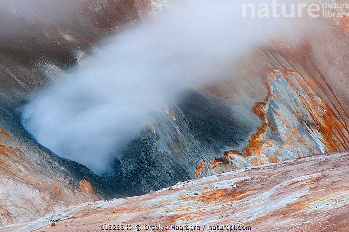 Steam from fumarole on the side of Mountain Krafla, Iceland, June 2010  ,  EUROPE,GEOTHERMAL,ICELAND,LANDSCAPES,MOUNTAINS,ROCKS,SULPHUR,Geology  ,  Orsolya Haarberg