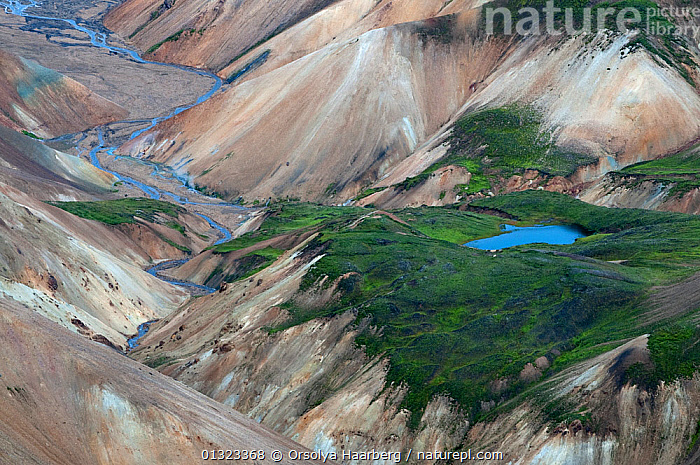 Rhyolite mountains at sunset, from the top of Haalda, Landmannalaugar, Fjallabak Nature Reserve, Iceland, September 2010  ,  EUROPE,GREEN,ICELAND,LANDSCAPES,MOSS,MOUNTAINS,PLANTS,RESERVE,VALLEY  ,  Orsolya Haarberg