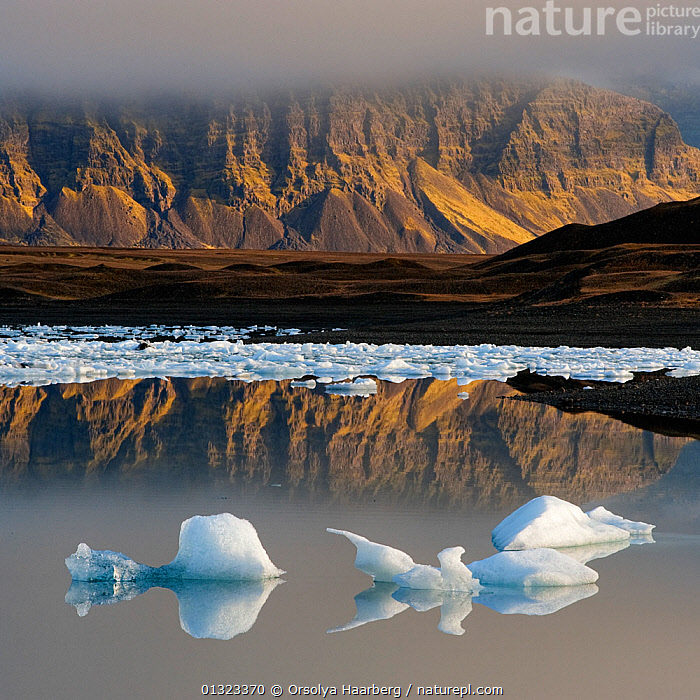 Glacial ice floating in the Jokulsarlon glacier lagoon. Iceland, September 2010  ,  catalogue3,COLD,EUROPE,floating on water,GEOLOGY,GLACIERS,GLOBAL WARMING,ICE,ICELAND,Jokulsarlon glacier,lagoon,landscape,LANDSCAPES,MIST,nature,Nobody,outdoors,PEACEFUL,Physical Geography,REFLECTIONS,Silence,tranquil scene,WATER  ,  Orsolya Haarberg