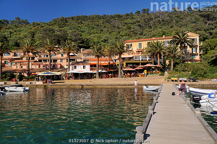Port Cros Harbour front and jetty, Port Cros Island National Park, Hyeres archipelago, France, May 2010.  ,  BUILDINGS,CAFES,EUROPE,FRANCE,HARBOURS,ISLANDS,JETTIES,LANDSCAPES,MEDITERRANEAN,NP,PEOPLE,PORTS,RESTAURANTS,TOURISM,TOURISTS,National Park  ,  Nick Upton