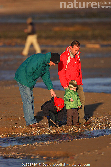 Two fathers with young children looking at Severn estuary intertidal zone,Gloucestershire,England,UK, December 2009. MRDELETE  ,  CAUCASIAN,CHILDREN,ENGLAND,ESTUARIES,EXPLORING,FAMILIES,LITTORAL,MAN,MEN,OUTDOORS,PEOPLE,RIVERS,TIDAL,TODDLERS,UK,VERTICAL,WATER,Europe,Intertidal,United Kingdom  ,  David Woodfall