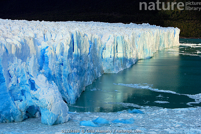 Perito Moreno Glacier, Los Glaciares National Park, Patagonia, Argentina, January 2006  ,  BLUE,CLIFFS,COASTS,GLACIERS,ICE,LANDSCAPES,NP,RESERVE,SOUTH AMERICA,WATER,SOUTH-AMERICA,Geology,National Park,core collection xtwox  ,  Oriol Alamany