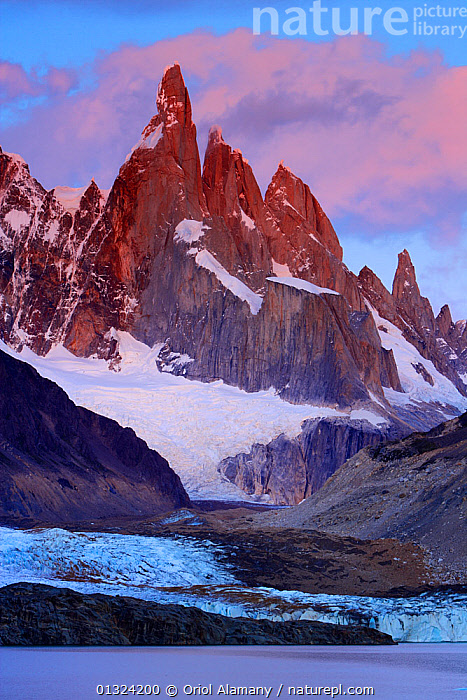 Laguna Torre and Grande glacier below Cerro Torre (3102 m) at dawn, Los Glaciares National Park, Andes, Patagonia, Argentina, January 2006  ,  DAWN,GLACIERS,LAKES,LANDSCAPES,MOUNTAINS,NP,RESERVE,SNOW,SOUTH AMERICA,VERTICAL,Geology,National Park  ,  Oriol Alamany