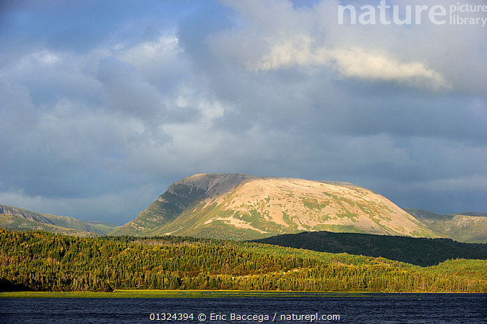 Gros Morne mountain. Gros Morne National Park, Newfoundland, Canada, September 2010  ,  CANADA,CLOUDS,COASTS,EROSION,FORESTS,GULF,LANDSCAPES,MOUNTAINS,NORTH AMERICA,NP,ROCKS,WATER,Weather,National Park  ,  Eric Baccega