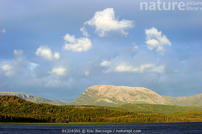 Gros Morne mountain. Gros Morne National Park, Newfoundland, Canada, September 2010  ,  CANADA,CLOUDS,COASTS,EROSION,FLAT ,FORESTS,GULF,LANDSCAPES,MOUNTAINS,NORTH AMERICA,NP,ROCKS,WATER,Weather,National Park  ,  Eric Baccega