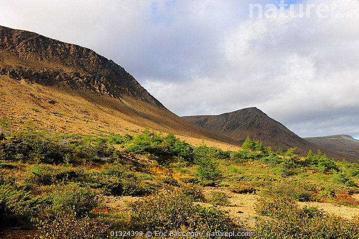 Tablelands, Gros Morne National Park, Newfoundland, Canada, September 2010  ,  CANADA,CLIFFS,CLOUDS,EROSION,GEOLOGY,LANDSCAPES,MOUNTAINS,NORTH AMERICA,NP,Weather,National Park  ,  Eric Baccega