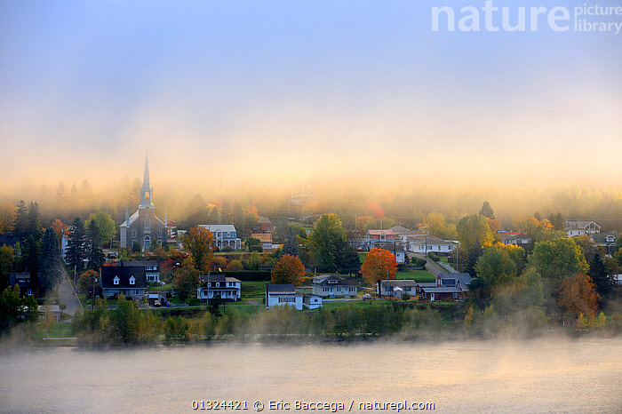 Early morning mist and autumn colours in Grande Piles Village and St Maurice river. Quebec, Canada, October 2010  ,  aerial view,AERIALS,AUTUMN,building exterior,CANADA,catalogue3,church,COLOURFUL,Community,copyspace,elevated view,FORESTS,Grande Piles Village,HORIZONTAL,LANDSCAPES,magical,MIST,misty,Morning,mystery,Nobody,NORTH AMERICA,NP,outdoors,PEACEFUL,Quebec,RIVERS,spire,St Maurice river,Travel,URBAN,VILLAGES,WATER,National Park  ,  Eric Baccega