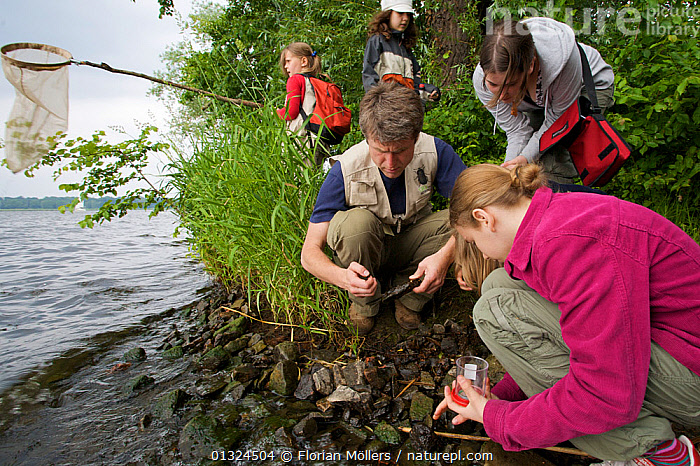 Children and adults pond dipping, Berlin, Germany, June 2006  ,  CAUCASIAN,CHILDREN,EDUCATION,EUROPE,GERMANY,GROUPS,LAKES,MAN,NETS,OUTDOORS,PEOPLE,RESEARCH,WATER,WOMAN  ,  Florian Möllers