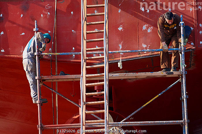 Two men working on trawler in the boatyard at Guilvinec. Finistere, Brittany, France, October 2010. For editorial use only.  ,  BOATS,BOATYARD,BOAT YARD,BOATYARDS ,BOAT YARDS,DRY LAND,EUROPE,FISHING BOATS,FRANCE,HULLS,LADDER,LADDERS,MAINTENANCE,MEN,MS,PEOPLE,REPAIRS,SCAFFOLDING,TRAWLERS,WORKING,WORKING BOATS,WORKING-BOATS ,core collection xtwox,BOAT-PARTS  ,  Benoit Stichelbaut
