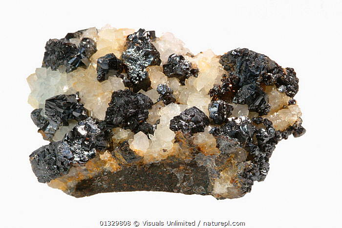 Small jet-black Sphalerite crystals on Quartz, Cumbria, England  ,  CRYSTAL,CUTOUT,ENGLAND,GEOLOGY,HORIZONTAL,IMAGE,MINERAL,MINERALS,OBJECT,SPHALERITE,STUDIO,WHITE,Europe  ,  Visuals Unlimited