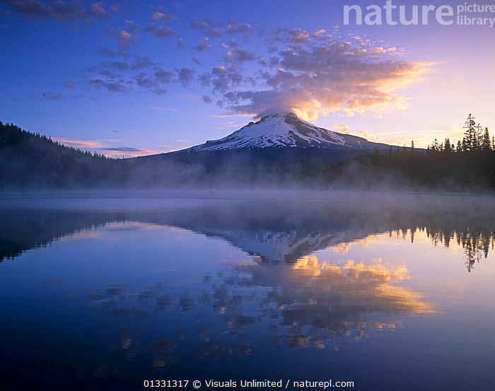 Mt. Hood and clouds mirrored on Trillium Lake at sunrise, Mt. Hood Wilderness Area, Oregon, USA.  ,  CLOUD,GEOLOGY,HOOD,LAKE,LAKES,LANDSCAPES,MIST,MOUNTAINS,MT.,OREGON,OUTDOORS,REFLECTION,REFLECTIONS,SUNRISE,TRILLIUM,USA,VOLCANO,VOLCANOES,WILDERNESS,North America  ,  Visuals Unlimited