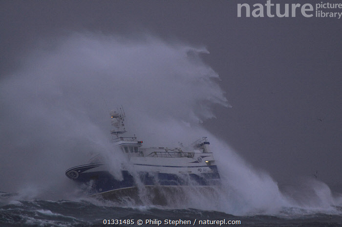 "Huge wave enveloping fishing vessel ""Harvester"" while operating in the North Sea. Europe, November 2010. Property released.  ,  BOATS,DANGEROUS,EUROPE,EXTREME,FISHING BOATS,NORTH SEA,OBSCURED,PROFILE,SPRAY,STORMS,TRAWLERS,WAVES,WEATHER,WORKING BOATS  ,  Philip Stephen"