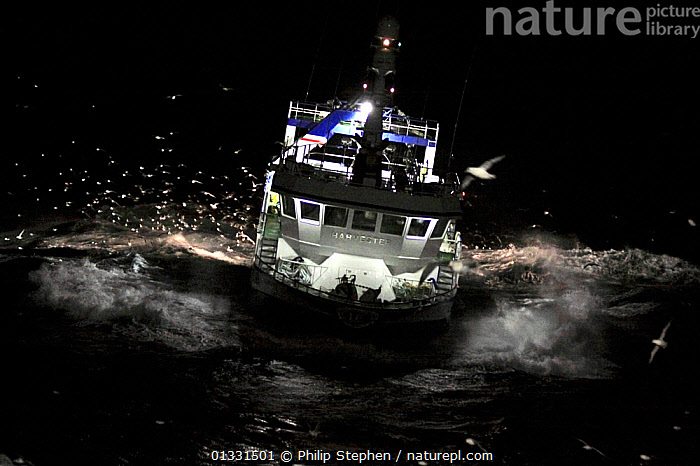 Fishing vessel operating during the night, North Sea, Europe, February 2011. Property released.  ,  ADVENTURE,ATMOSPHERIC,BOATS,EUROPE,EXTREME,FISHING BOATS,HEAVY SEAS,LIGHTS,NIGHT,NORTH SEA,SPRAY,STORMS,TRAWLERS,WAVES,WORKING BOATS,Weather  ,  Philip Stephen