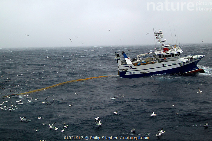 """Fishing vessel """"Harvester"""" dragging her nets on the North Sea. Europe, February 2011. Property released.  ,  BOATS,CHOPPY,EUROPE,FISHING,FISHING BOATS,NET,NETS,NORTH SEA,PROCEDURES,PROFILE,TRAWLING,WORKING BOATS  ,  Philip Stephen"""