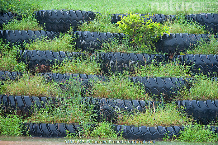 Old used truck tyres recycled and filled with plants  to landscape the bauxite mining area wall facing the highway. Queensland, Australia, February 2008  ,  AUSTRALASIA,AUSTRALIA,CONSERVATION,ENVIRONMENTAL,GARDENS,GREEN,PLANTS,ROADS,TYRES  ,  Jurgen Freund
