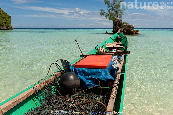 Shark finning boat pulled up onto the beach in Daram Island, Indonesia, January 2010  ,  ASIA,BEACHES,BOATS,ceram sea,COASTS,coral triangle,CULTURES,FISHING,ISLANDS,LANDSCAPES,OPEN BOATS,SOUTH EAST ASIA,submission,TRADITIONAL,TROPICAL,,SOUTH-EAST-ASIA  ,  Jurgen Freund
