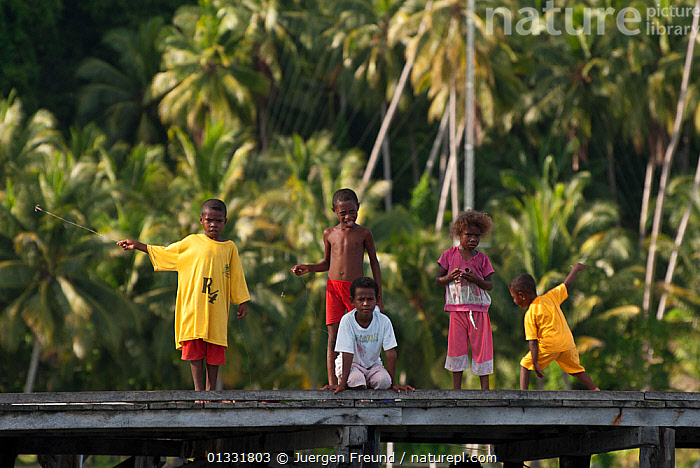 Young West Papuan kids fishing from the their village jetty. Raja Ampat, West Papua, Indonesia, February 2010  ,  ASIA,Boy,boys,catalogue4G,Childhood,CHILDREN,children only,COASTAL WATERS,coral triangle,CULTURES,FISHING,five people,full length,girl,girls,GROUPS,INDONESIA,INDO PACIFIC,Irian Jaya,JETTIES,Jetty,Jungle,local people,looking at camera,MARINE,PALMS,pier,Raja Ampat,recreational fishing,SOUTH EAST ASIA,STANDING,TROPICAL,VILLAGES,WEST PAPUA,WWF,SOUTH-EAST-ASIA,NEW-GUINEA,JURGEN  ,  Juergen Freund