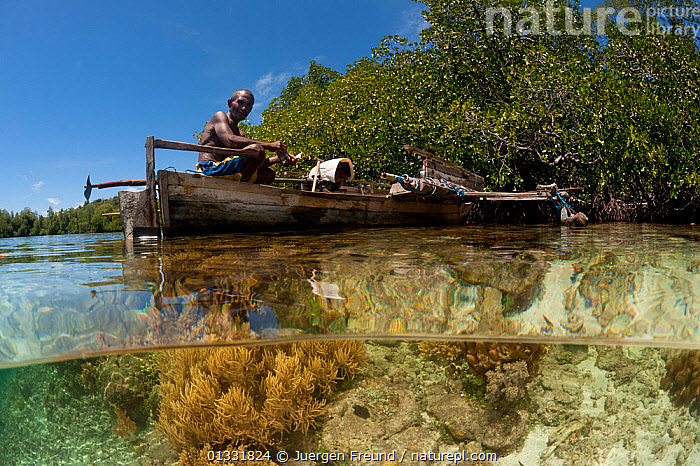 Split-level shot of a shallow coral reef and mangroves with local West Papuan man in a dugout canoe. North Raja Ampat, West Papua, Indonesia, February 2010  ,  ASIA,BOATS,CANOES,COASTAL WATERS,coral triangle,CORAL REEFS,CORALS,CULTURES,dugouts,FISHING,INDONESIA,INDO PACIFIC,Irian Jaya,MANGROVES,MARINE,MEN,OPEN BOATS,PEOPLE,SOUTH EAST ASIA,SPLIT LEVEL,TRADITIONAL,TREES,TROPICAL,WATER,WOODEN,,OPEN-BOATS,SOUTH-EAST-ASIA,NEW-GUINEA,PLANTS  ,  Jurgen Freund