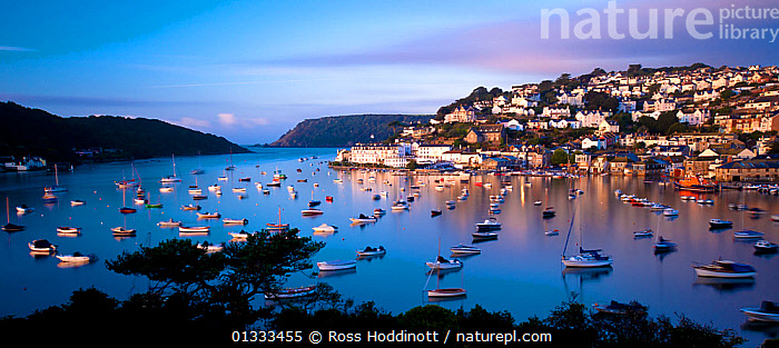 View of Salcombe and harbour from Snape�s Point in the early morning light. Salcombe, South Devon, UK, September 2010, BOATS,BUILDINGS,catalogue3,coastal,COASTS,Community,DAWN,Devon,elevated view,ENGLAND,EUROPE,fishing boat,harbour,HARBOURS,houses,Morning,Nobody,outdoors,PANORAMIC,panoramic image,picturesque,REFLECTIONS,Salcombe,Snape�s Point,South Devon,TOWNS,Travel,UK,view to land,WATER,United Kingdom,core collection xtwox, Ross Hoddinott
