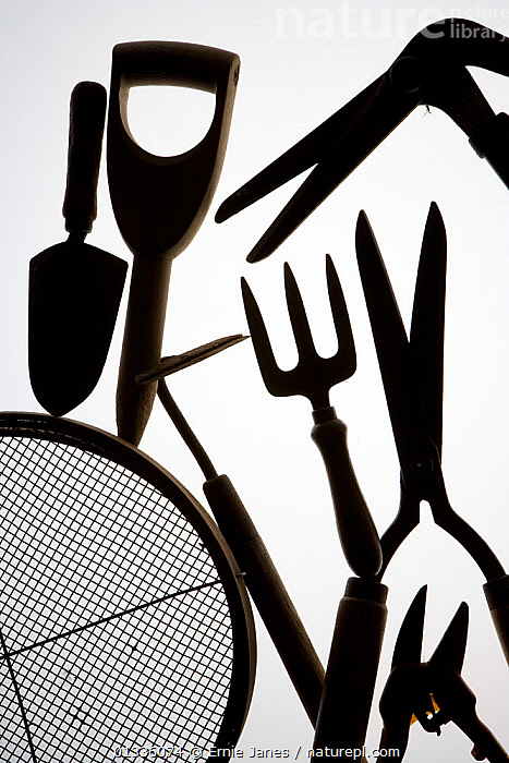 Silhouette of gardening tools, UK, ARTY SHOTS,black and white,catalogue4,close up,Dibbe,fork,full frame,gardening,gardening equipment,gardening fork,GARDENS,Hedgecutter,hoe,HORTICULTURE,medium group of objects,monochrome,Nobody,preparation,seive,shapes,shears,sieve,Silhouette,SILHOUETTES,studio shot,trowel,VERTICAL,white background,Europe,United Kingdom, Ernie Janes