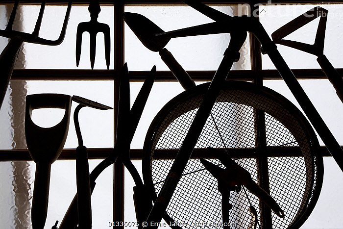 Silhouette of gardening tools, UK  ,  ARTY SHOTS,BLACK AND WHITE,DIBBE,EUROPE,FORK,GARDENING,GARDENS,HEDGECUTTER,HOE,HORTICULTURE,MONOCHROME,SEIVE,SHAPES,SILHOUETTES,SPADE,TROWEL,UK,United Kingdom  ,  Ernie Janes