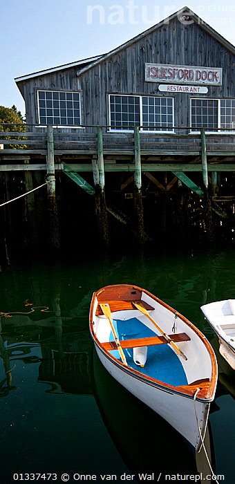 Small wooden boat moored at Mount Desert Island, Maine, USA, September 2010.  ,  BOATS,BUILDINGS,COASTS,MOORED,NORTH AMERICA,OPEN BOATS,SMALL,USA,VERTICAL,WOODEN,SIZE  ,  Onne van der Wal