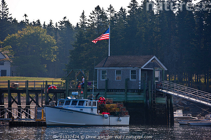 Fishing-boat moored at Mount Desert Island, Maine, USA, September 2010.  ,  BOATS,BUILDINGS,COASTS,FISHING BOATS,FLAGS,JETTIES,MOORED,MOTORBOATS,NORTH AMERICA,USA,WORKING BOATS  ,  Onne van der Wal